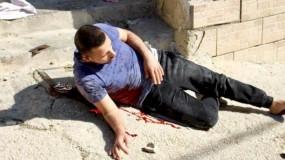 نيكولاي ملادينوف يدعو للتحقيق في اغتيال إسرائيل الشاب عمر البدوي بالخليل
