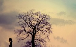 نص للشاعرة/أ. فوزية أوزدمير