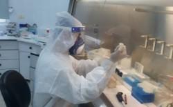 """""""الصحة"""" بغزة: تعافي 23 حالة من إصابات فيروس (كورونا) في القطاع"""