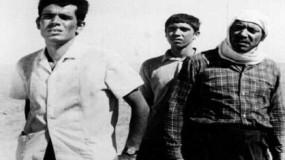 غسان كنفاني والسينما في فيلم «المخدوعون» لتوفيق صالح
