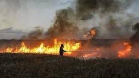 """ارتفاع عدد حرائق البالونات الحارقة بــ """"غلاف غزة"""" اليوم إلى أربعة"""