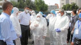 الكيلة: 1000 إصابة جديدة بكورونا و7 حالات وفاة خلال 24 ساعة الماضية