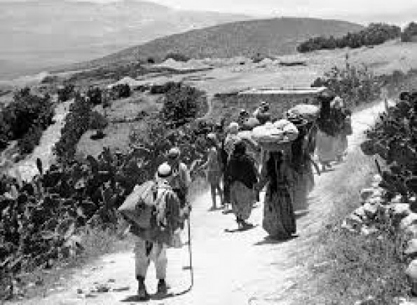 كشف تفاصيل خطة إسرائيلية لتهجير 60 ألف فلسطيني لباراغواي