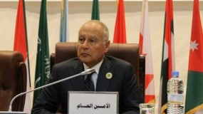 أبو الغيط: شبكة الأمان المالية العربية للفلسطينيين أصبحت سارية المفعول
